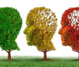 Las Jornadas de Alzheimer, en el Centro de Gran Vía