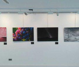 """La exposición """"El Rioja y los 5 sentidos"""", en el Centro de Arnedo"""
