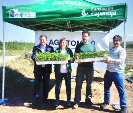 Iniciamos un proyecto para impulsar el cultivo del tomate en La Rioja