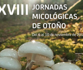 Jornadas Micológicas de Otoño organizadas por Bankia, Fundación Caja Rioja y Verpa