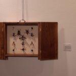 Segundo Premio. A los entomólogos del futuro